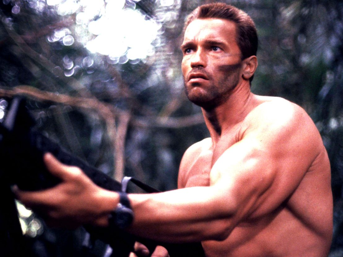Arnold Schwarzenegger Wiki Bio, Net Worth, Child, Children ...